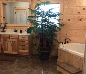 Hogan Creek Master Bath